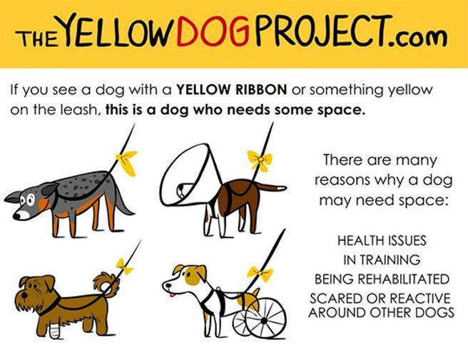 Códigos colores caninos