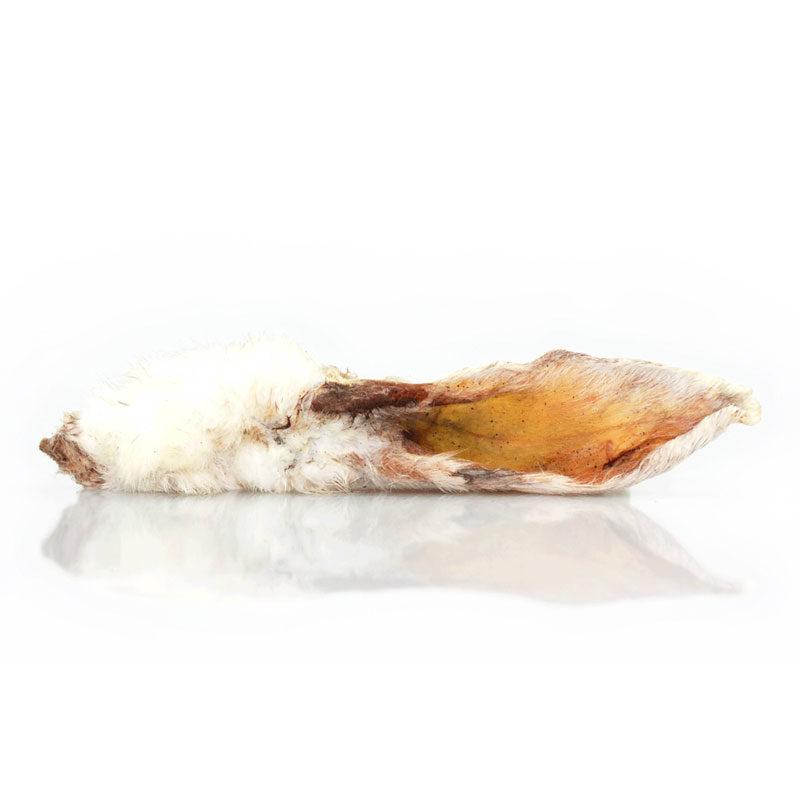 Snack natural perro de oreja de conejo peluda