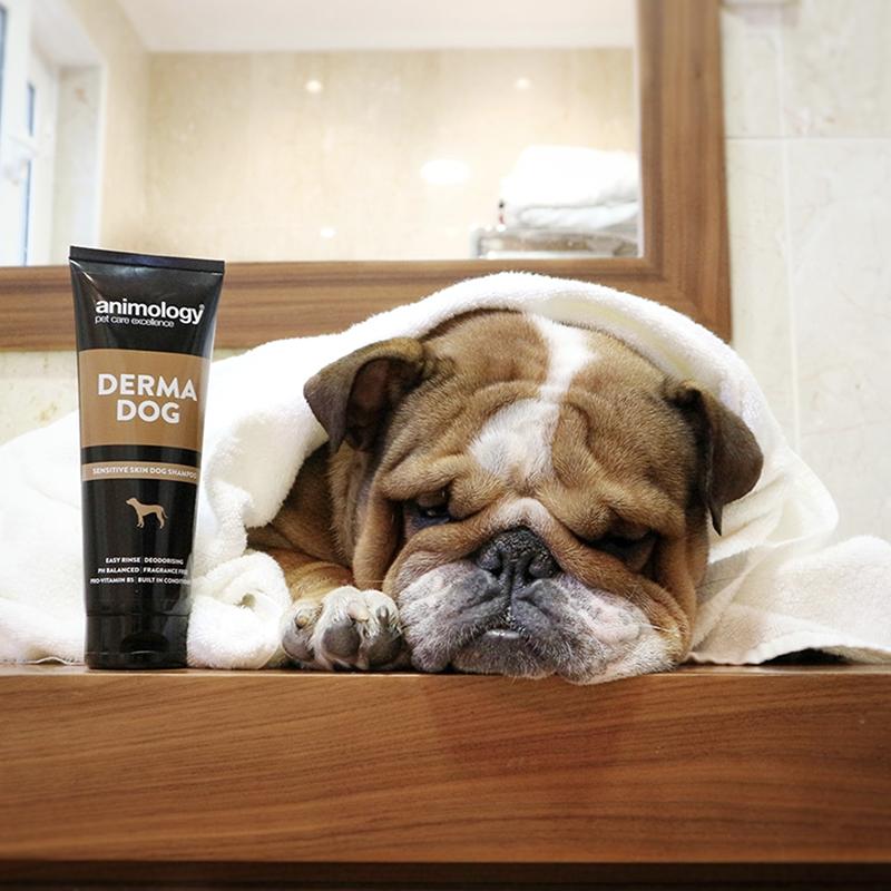 Champú para perros Derma Dog (Pieles sensibles) 250 ml