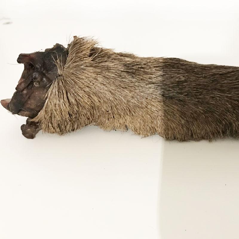 snack natural perro pata de ciervo con pelo