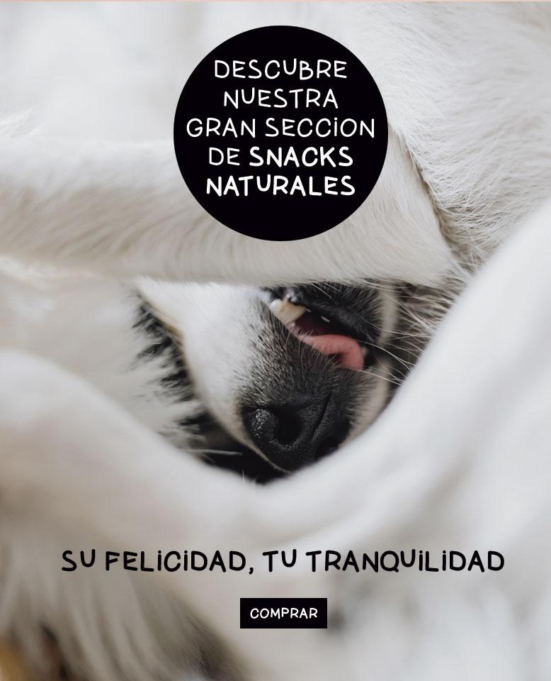 Snacks naturales para mascotas