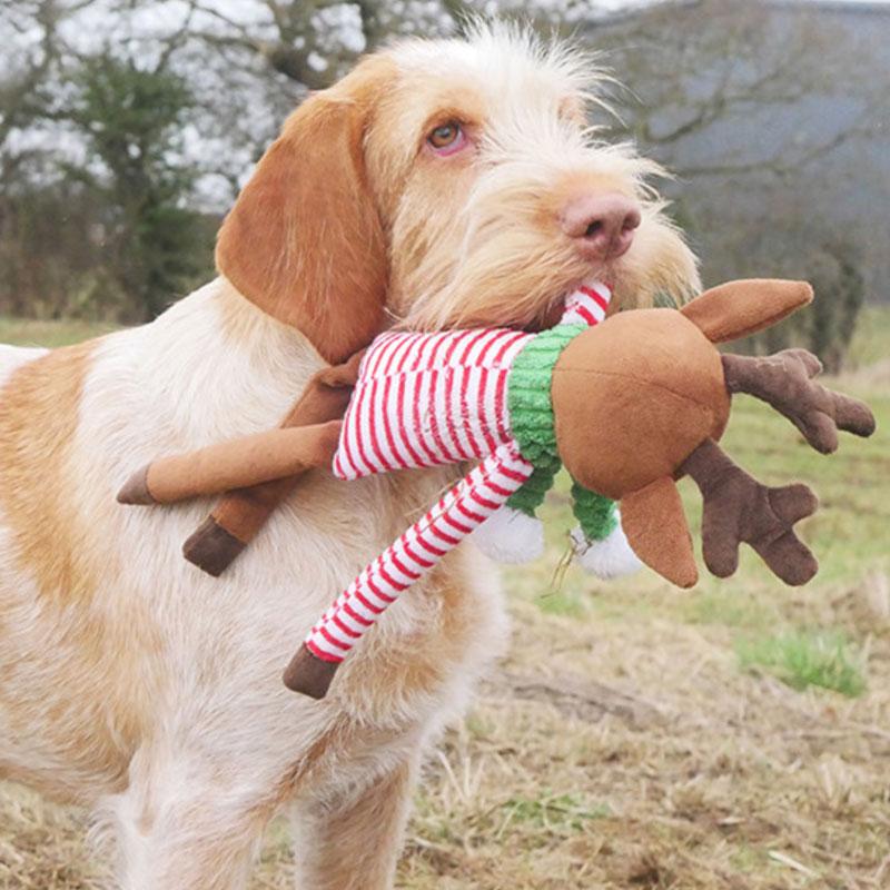 Juguete de navidad para perros rudolph