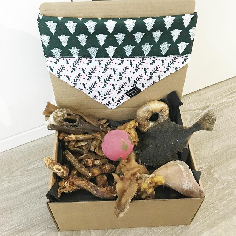 Caja de navidad para perros