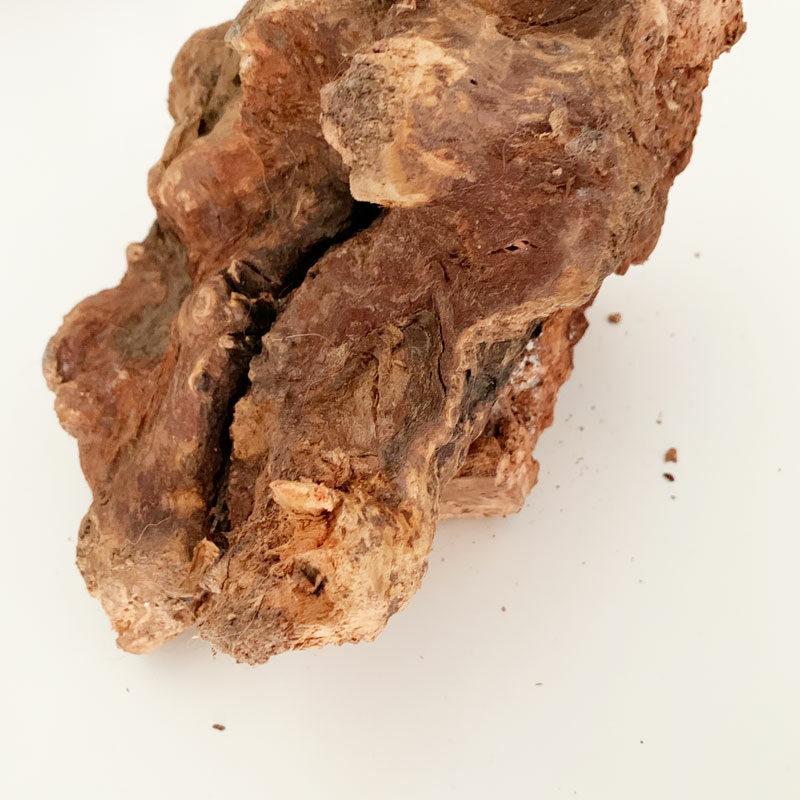 Mordedor de raiz de brezo