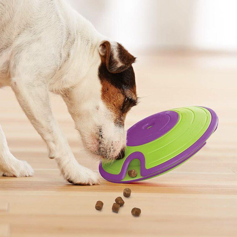 Juguete de inteligencia para perro Mazed Nina Ottosson