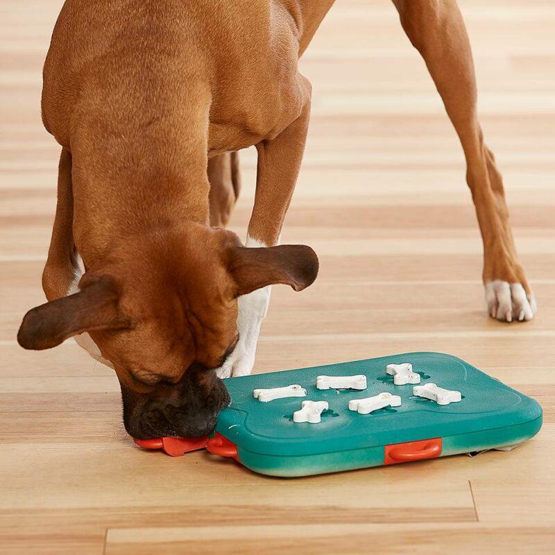 Juguete de inteligencia para perro Casino