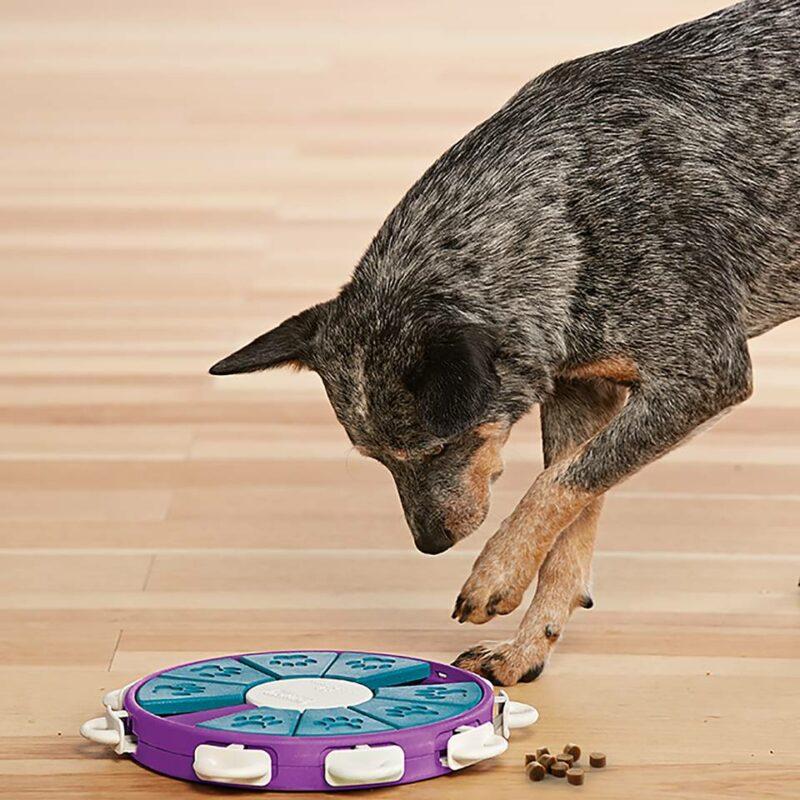 Juguete de inteligencia para perros Dog Twister