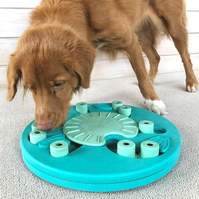 Juguete de inteligencia para perros Nina Ottosson