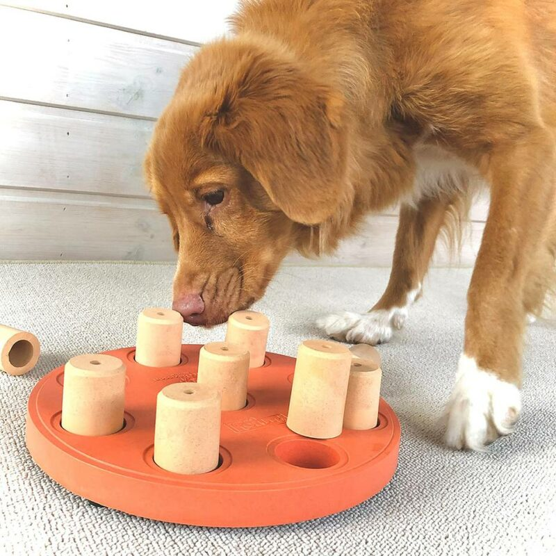 Juguete de inteligencia para perro Dog Smart Composite