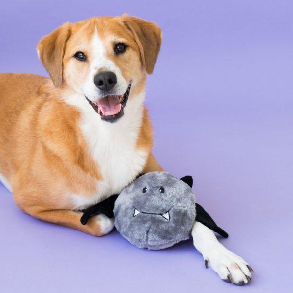 Juguete perro halloween